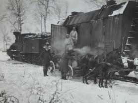 Вузькоколійка у Рогізному на столітніх фото