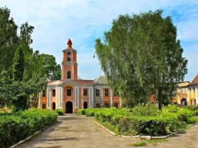Фото Олицького замку або резиденції Радзивіллів
