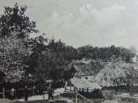 Село Брани