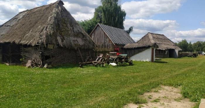 Музей-скансен в Рокинях