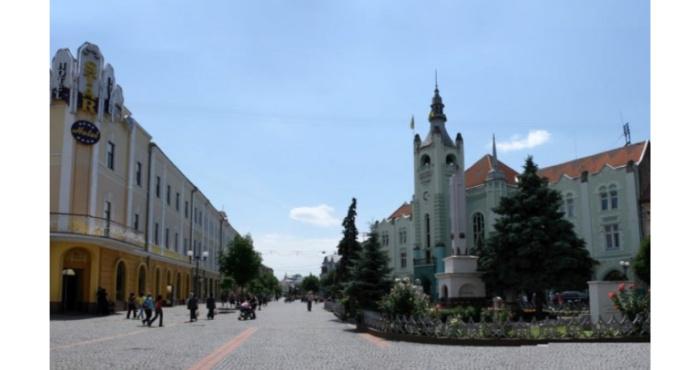 У Мукачеві пам'ятник з центру перенесуть на кладовище