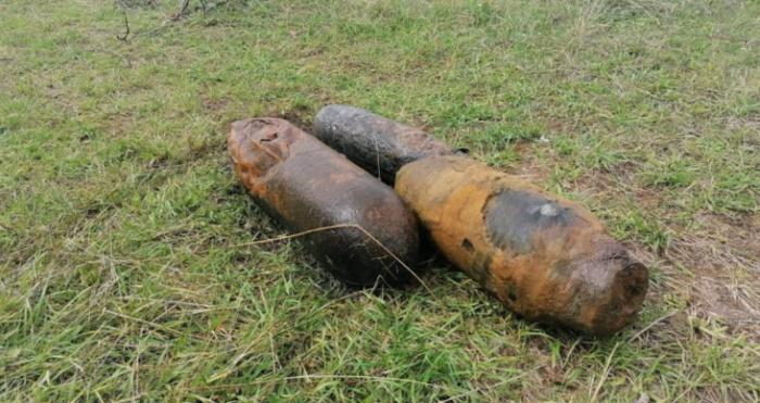 Біля села Журавлине знайшли три старі боєприпаси