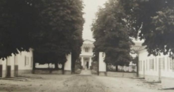 Палац в Дольську біля Турійська