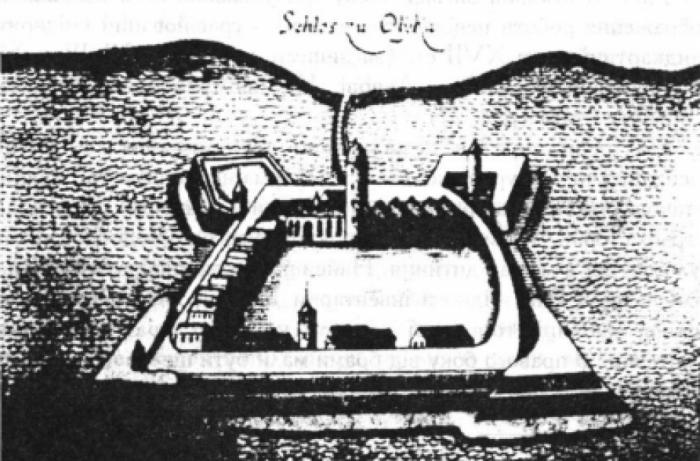 Гравійований (мідєрит) ландкартний план XVII ст. (за іншими даними XVIII ст.) – найдавніше зображення Олицького замку. Невідомий автор