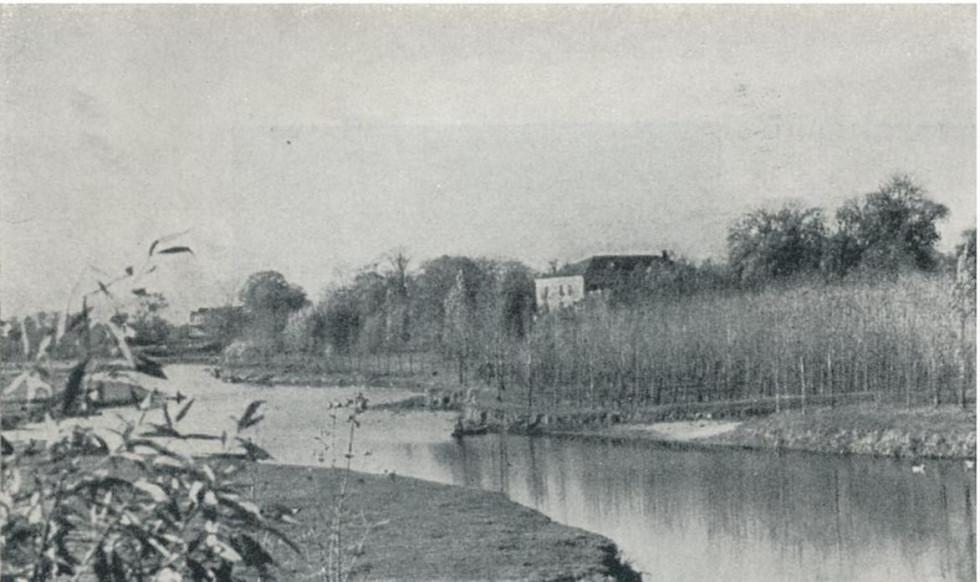 1920 рік