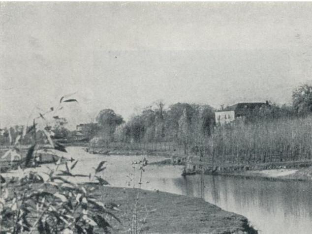 Річка Стир біля Берестечка 100 і 50 років тому