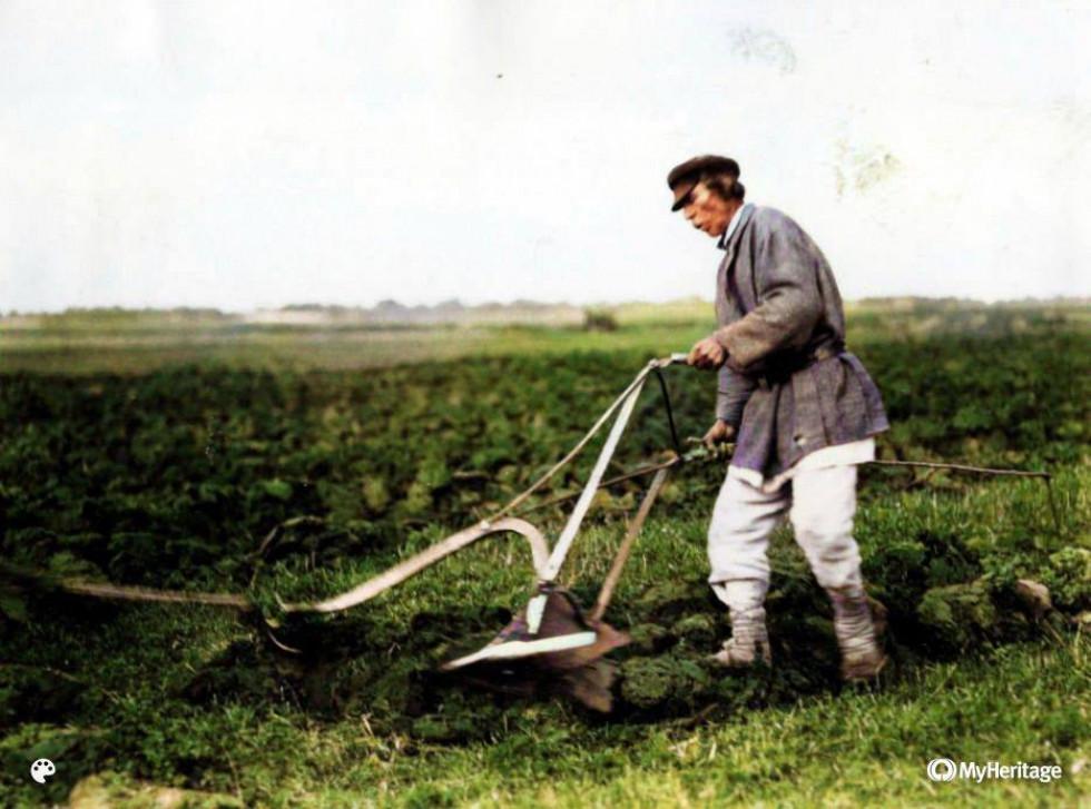 Чоловік під час польових робіт, Ратнівщина, 1934 рік