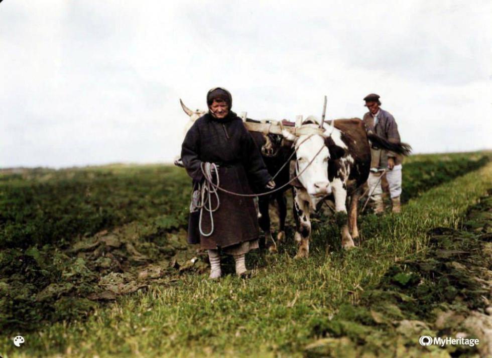 Подружжя на Ратнівщині, 1930-ті роки