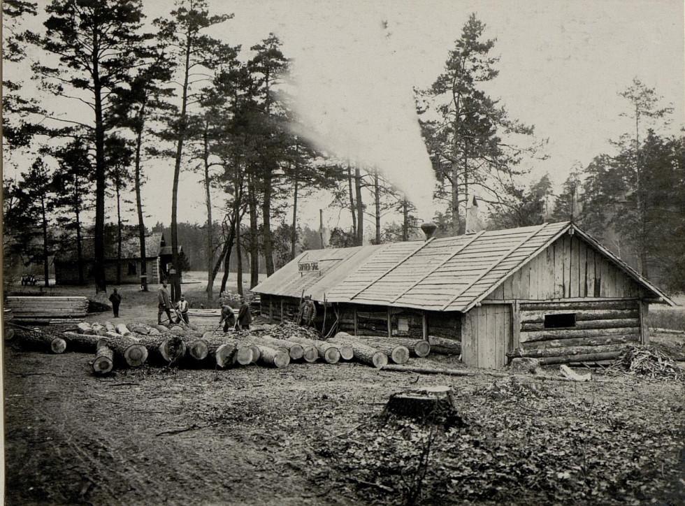 Деревообробне виробництво у Воротневі