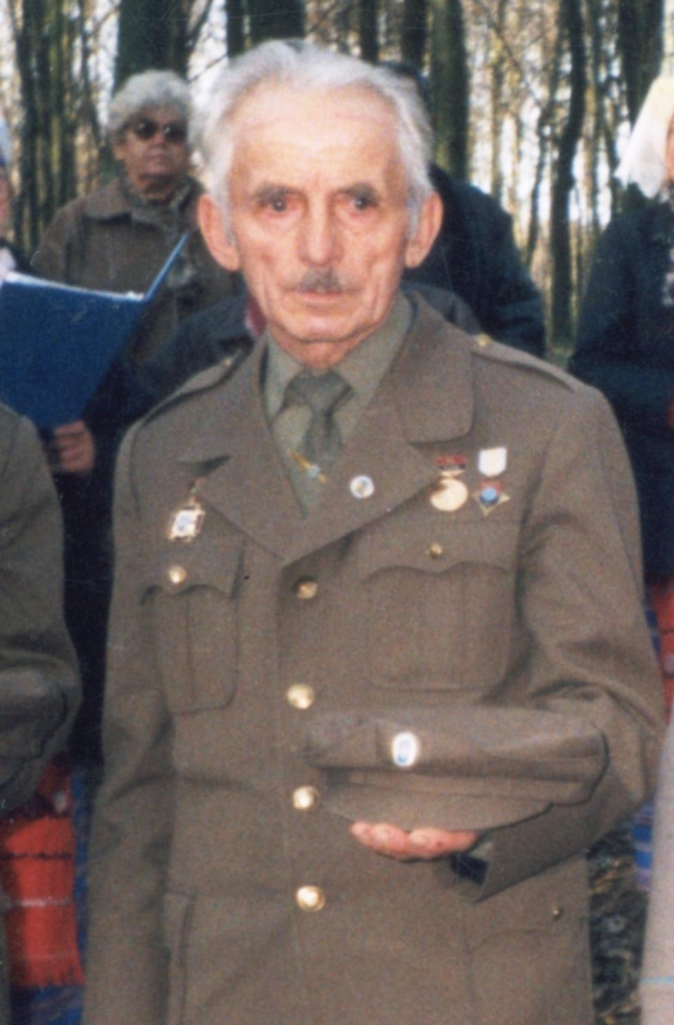 Володимир Доманський
